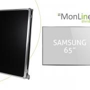 MonLines Transportcase für Samsung 65 Zoll Monitor